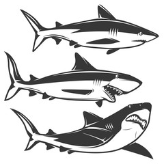 Set of shark icons isolated on white background.