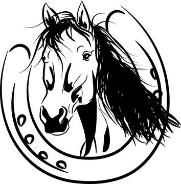 horse with horseshoe