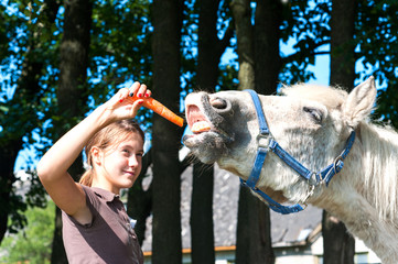 Hungry funny horse eating yummy carrot!