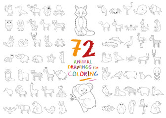 Set of 72 Animal Drawings for Coloring