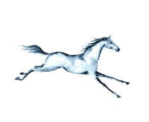 Hand painting watercolor galloping horse on white.