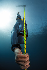 Wall Mural - Free diver descending along the rope into depth. Free immersion discipline of the sport