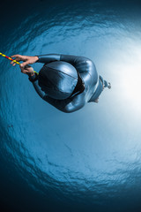 Wall Mural - Woman free diver moving along the rope