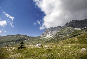 Auf den Montasch - Almen