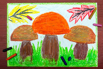 Colorful drawing: edible mushrooms in the grass