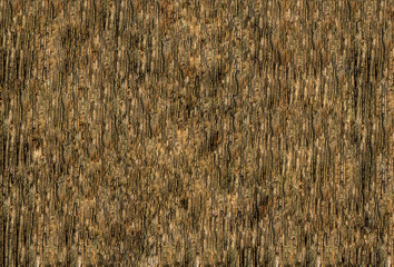 illustration wooden peel pattern pine bark hardwood dark beige