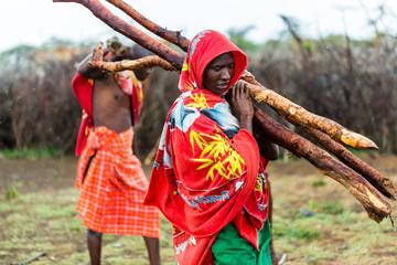 Massai man collecting firewood Wall mural