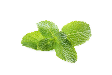 Fresh mint leafs isolated on a white