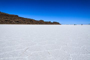 Island in the Salar de Uyuni. Bolivia