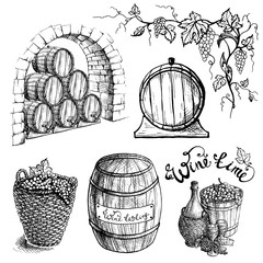 Set of grape and wine barrels in graphic style hand-drawn vector illustration