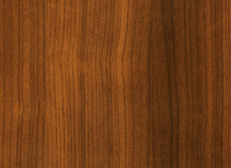 Wooden texture. High detailed of the image