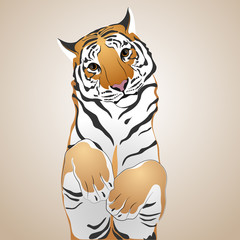 Cute tiger.