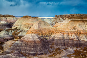 The Petrified Forest National Park in Arizona.