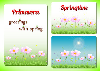 Three spring templates with beginning of spring concept. Pink spring flowers on meadow in three versions for banners, cutaways, visit cards. Vector illustration