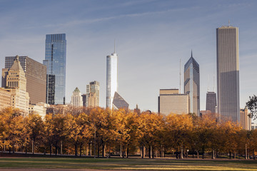 Fototapete - Autumn in Chicago
