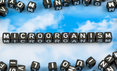 The word microorganism on the sky background