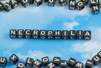 The word Necrophilia on the sky background