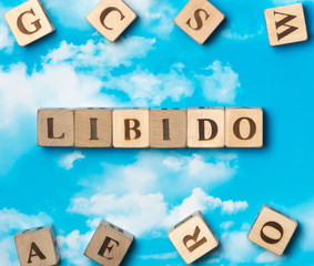The word libido on the sky background