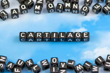 The word Cartilage on the sky background