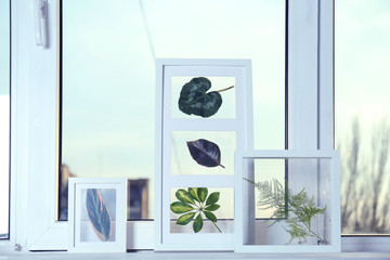 White frames with green leaves on windowsill