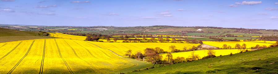 A panorame view of the Hertfordshire and Bedfordshire countryside in spring Fototapete