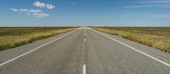 Straight road to horizon somewhere in the Australian Outback Wall mural