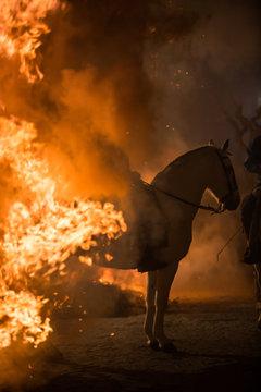 Horse riding through bonfire