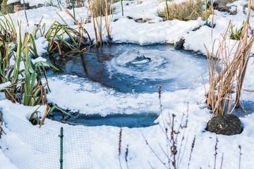 Gartenteich eingefroren