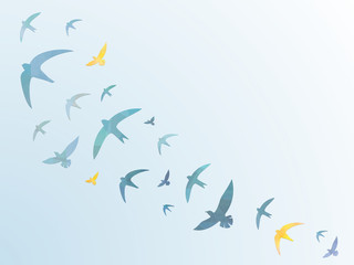 Birds in the sky – Background - Blue Sky