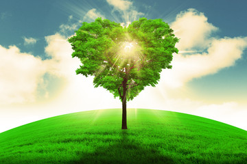 Heart shape tree  - Love and nature concept.