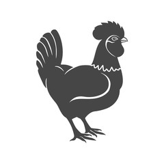 Rooster vector logo concept