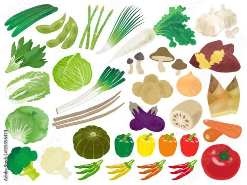 野菜のイラスト素材セットfotoliacom の ストック画像とロイヤリティ