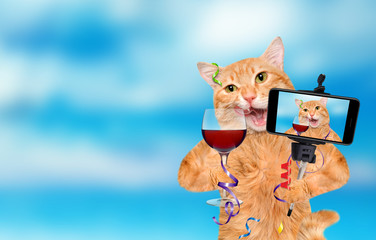 Cat is holding a glass of wine and celebrating. Cat taking a selfie together with a smartphone.