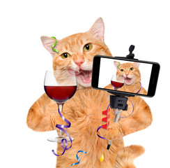 Cat is holding a glass of wine and celebrating. Cat taking a selfie together with a smartphone.Isolated on white background.