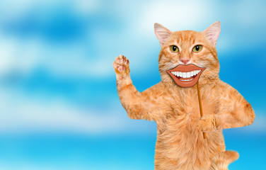 Cat holding card with funny smiley .
