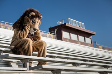 Sad and dejected sports team mascot laments the loss of the game.