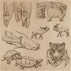 animals - an hand drawn vector pack, collection.