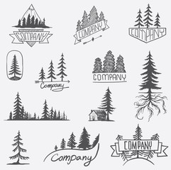 Forest badge tree vector set isolated