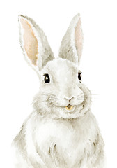 Easter Bunny. Farm animals. Watercolor drawing. Cute Illustration