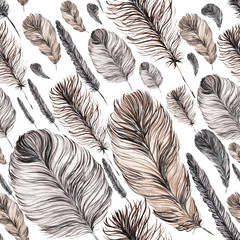 seamless pattern of feathers, hand-painted watercolor. Grey and