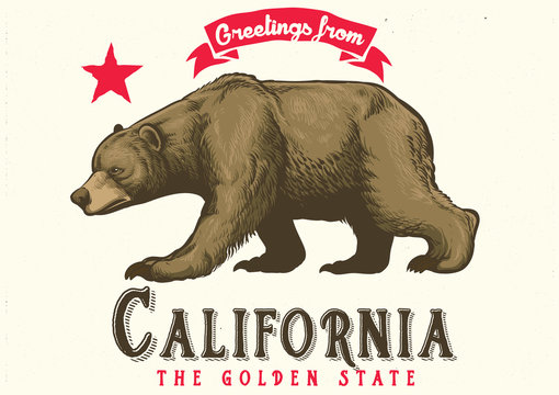 greeting from california with brown bear