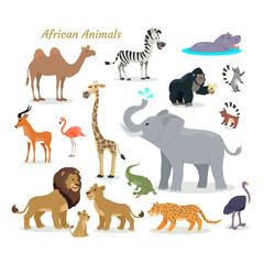 African Fauna Species. Cute Animals Flat Vector.
