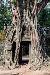 Ta Som (Prasat Ta Saom), part of Khmer Angkor temple complex
