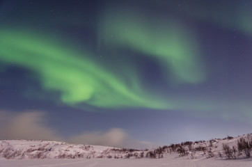 Winter,snow,Aurora,Northern lights,night,stars.