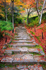 Wall Mural - Stairway in autumn, Jojakkoji temple, Arashiyama, Kyoto, Japan