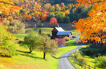 Barn in Vermont country side surrounded by autumn trees