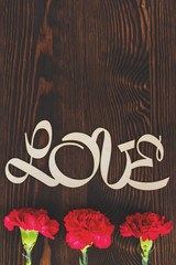 Decorative love text and carnations
