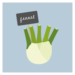 Vector Vegetable - Fennel