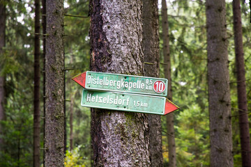 Way signs on a tree in the bavarian forest