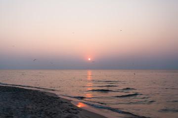 A photo of beach sunrise and sea gulls
